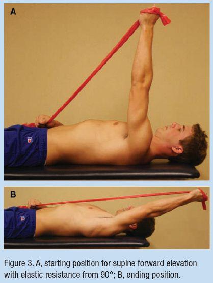 Shoulder muscle activation levels during range of motion ...