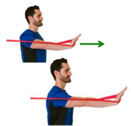clx shoulder serratus press  performance health academy