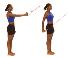 Thera-Band Shoulder Extension - Performance Health Academy