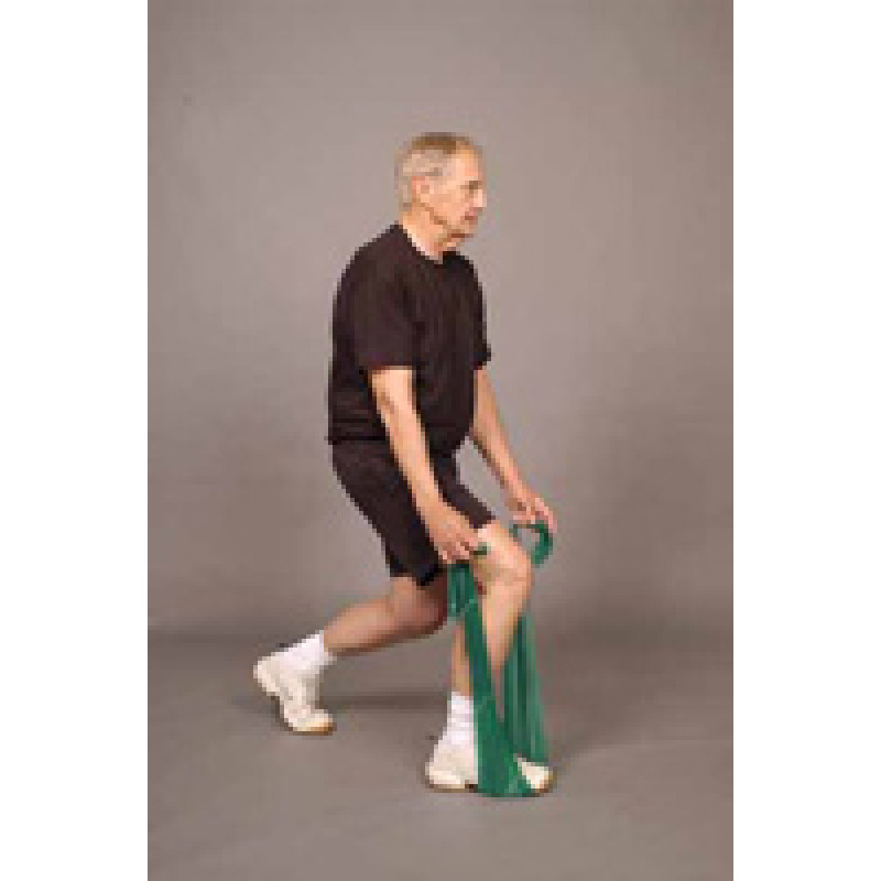 Thera-Band Lunge (Older Adult)