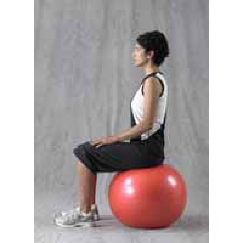 Pro Series Exercise Ball Pelvic Tilt