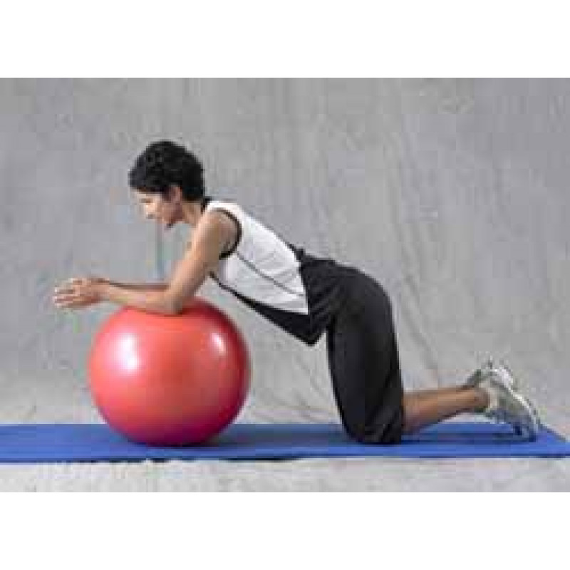 Pro Series Exercise Ball Prone Roll Out