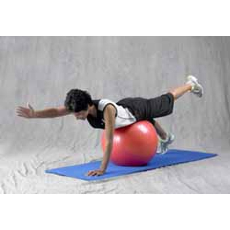 Pro Series Exercise Ball Quadruped Arm & Leg