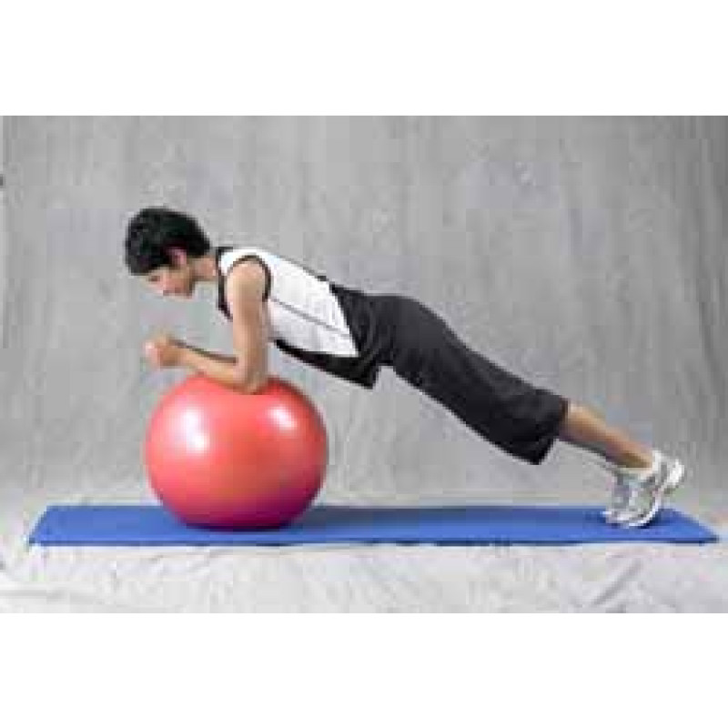 Pro Series Exercise Ball Prone Bridge