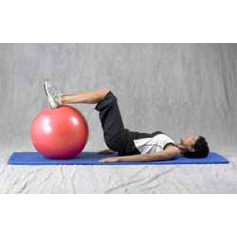 Pro Series Exercise Ball Hamstring Curl