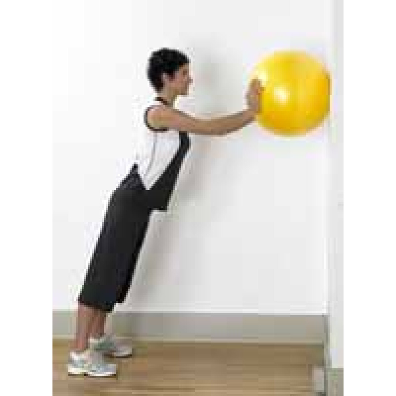 Pro Series Exercise Ball Push Up on Wall