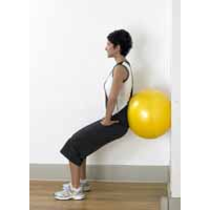 Pro Series Exercise Ball Wall Squat