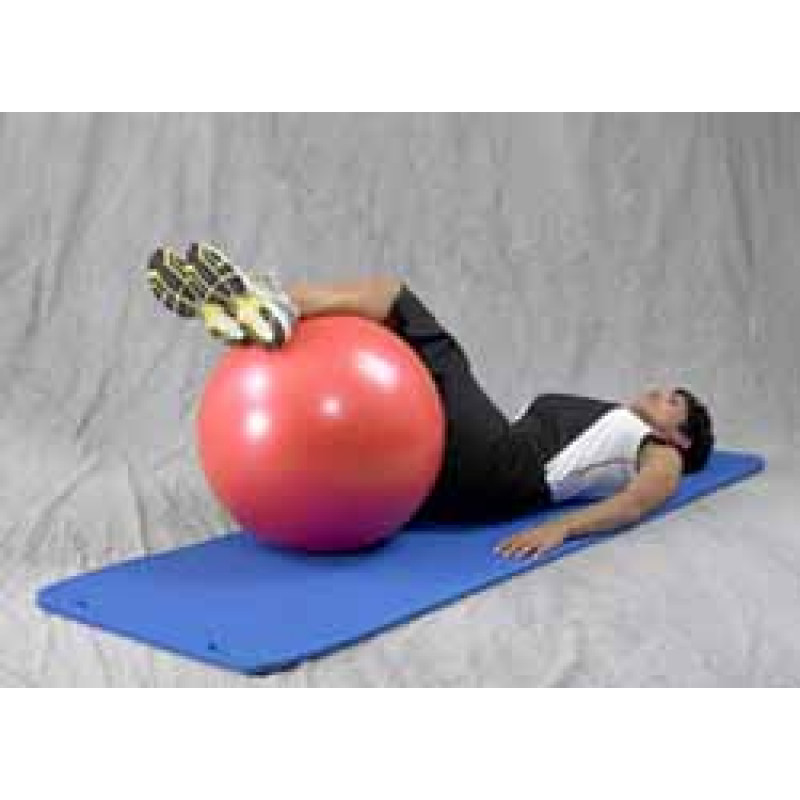 Pro Series Exercise Ball Lower Trunk Rotation