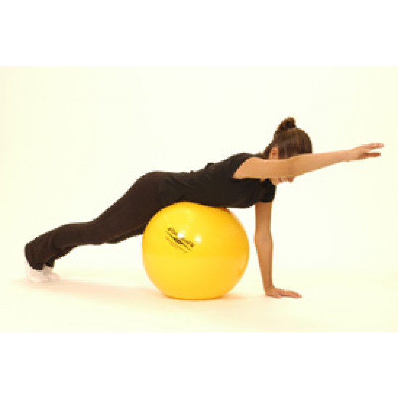 Pro Series Exercise Ball Prone Shoulder Flexion