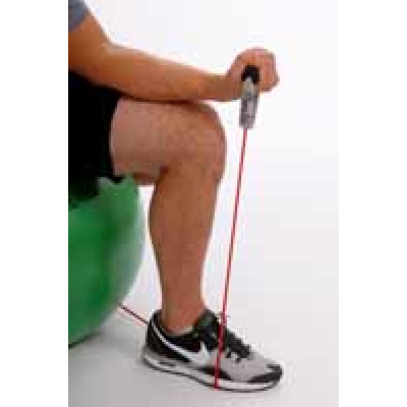 Thera-Band Tubing Wrist Flexion