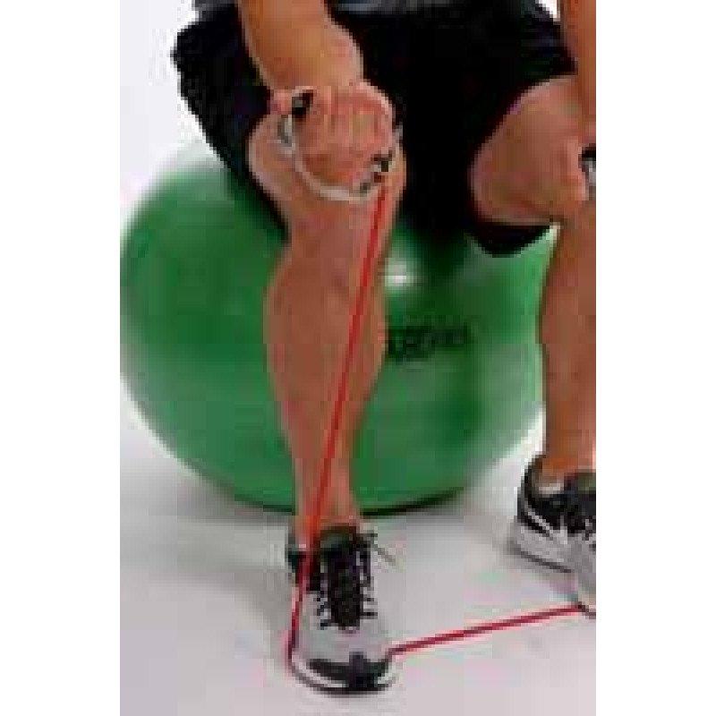 Thera-Band Tubing Forearm Supination