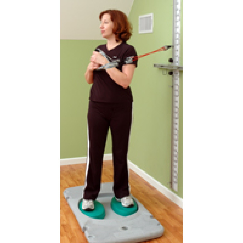 Rehab Station Lumbar Rotation on Stability Trainer