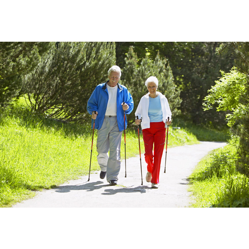 Effects of Nordic Walking Compared to Conventional Walking and Band-based Resistance Exercise on Fitness in Older Adults