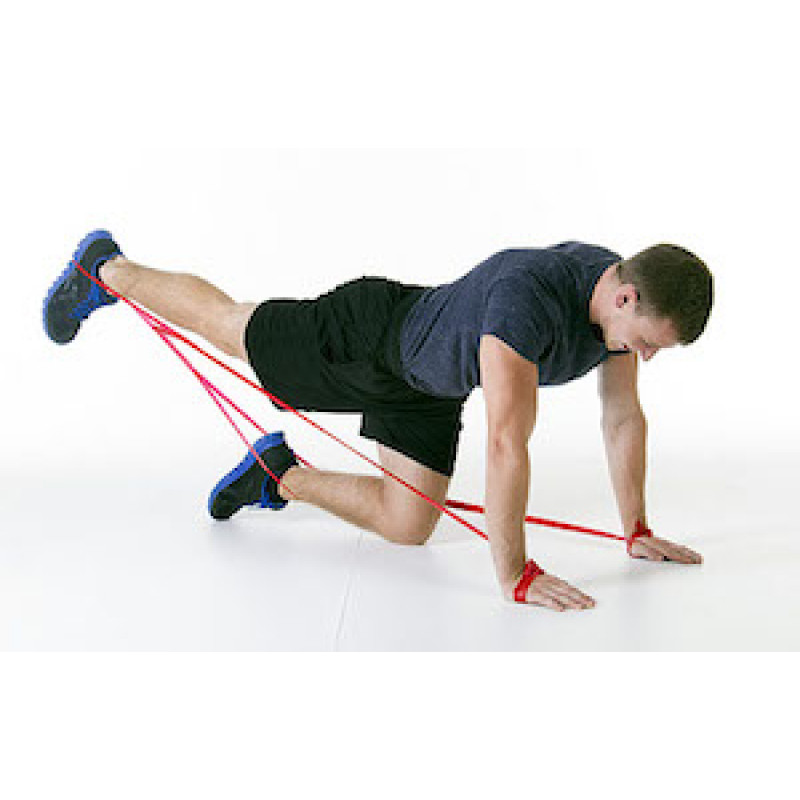 CLX Core Stabilization Quadruped Arm and Leg
