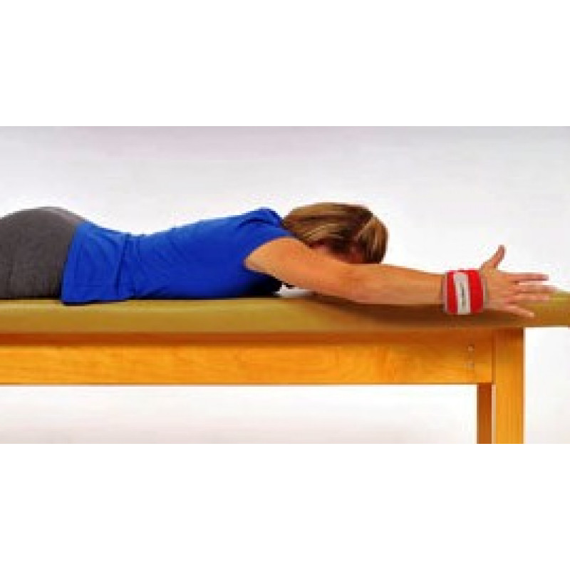 Thera-Band Cuff Weight Prone Flexion