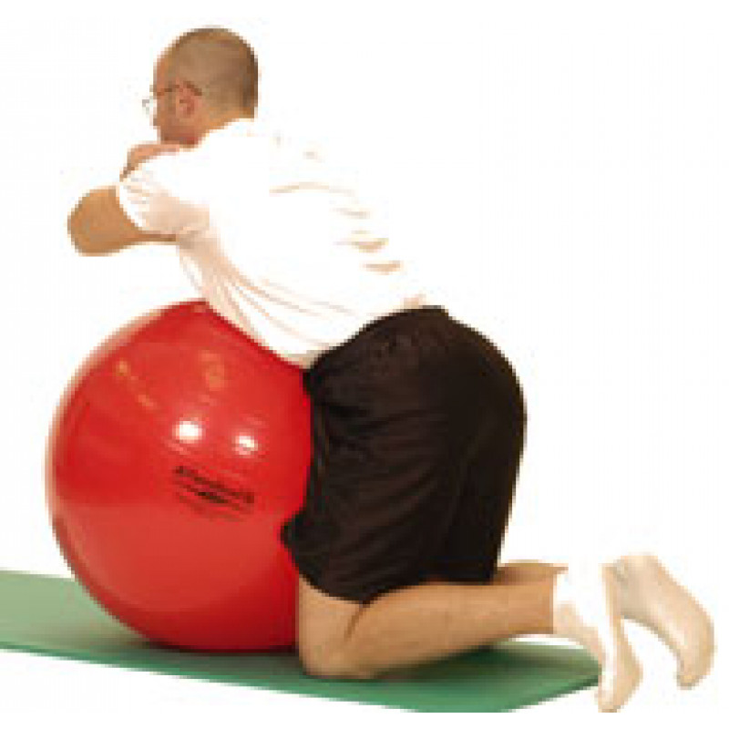 Pro Series Exercise Ball Low Back Extension