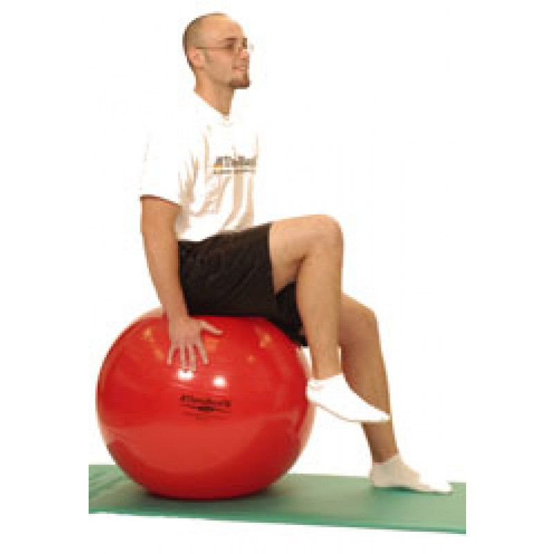 Pro Series Exercise Ball Sitting Hip Flexion