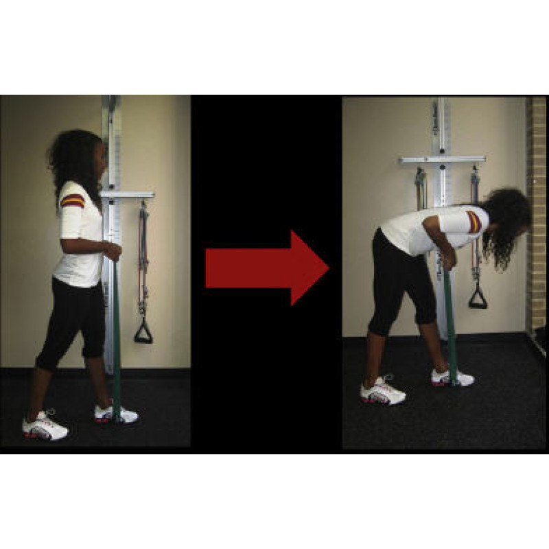 Thera-Band Hamstring Eccentric Closed-Chain Split Squat