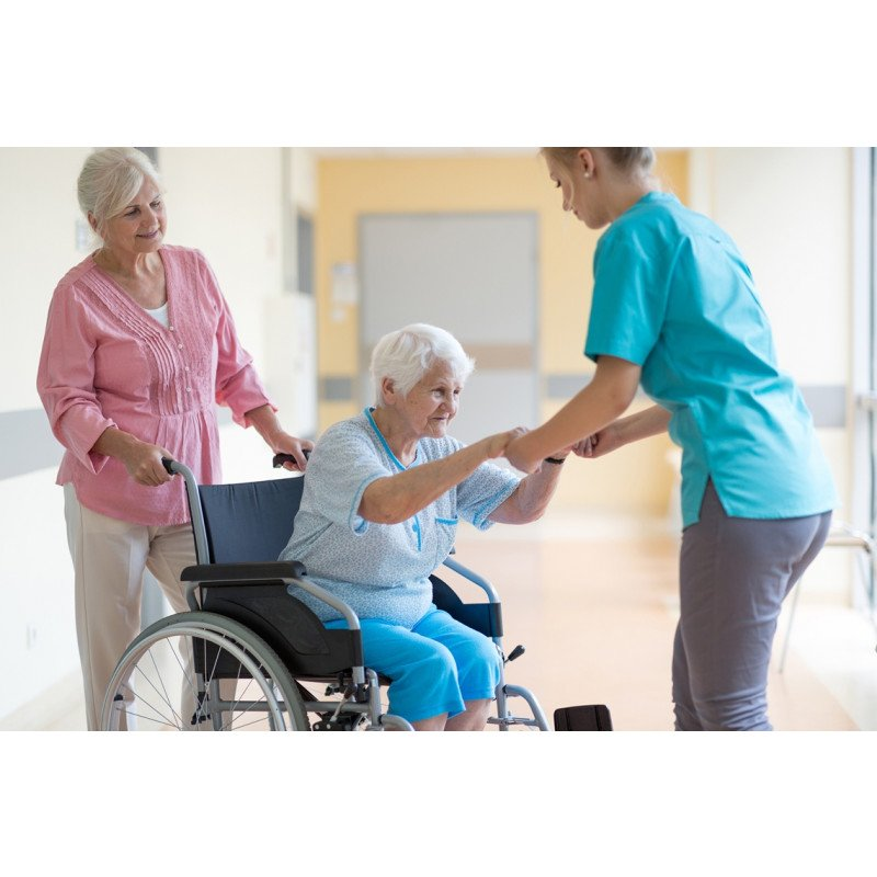 Impact of Participation in a Wellness Program on Functional Status and Falls Among Aging Adults in an Assisted Living Setting