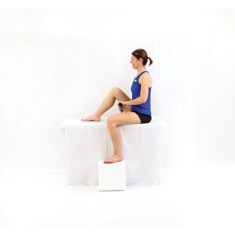 Roller Massager+ Shortened Hamstring Release