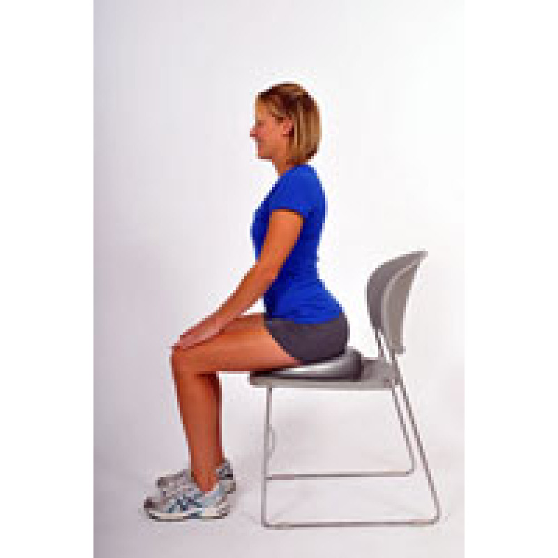 Thera-Band Stability Disc Sitting Pelvic Tilt