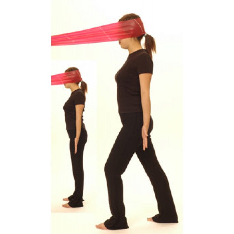 Thera-Band Cervical Extension-Dynamic Isometric (standing)