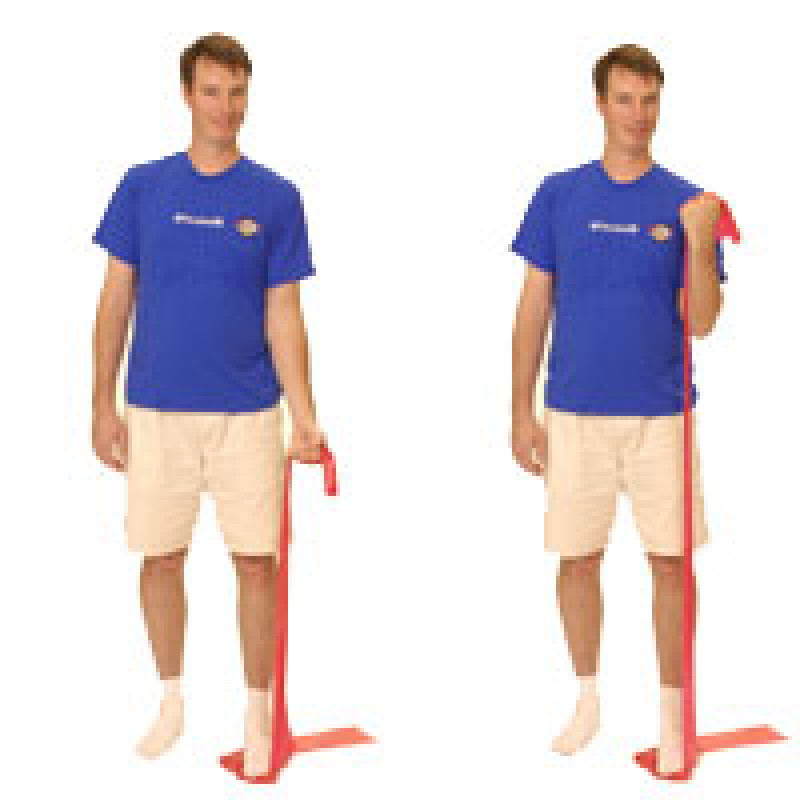 Thera-Band Elbow Flexion (standing unilateral)