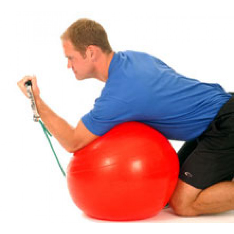Thera-Band Elbow Biceps Concentration Curl