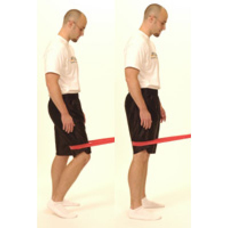 Thera-Band Terminal Knee Extension (TKE)