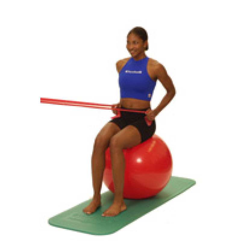 Thera-Band Shoulder Seated Row (Low)