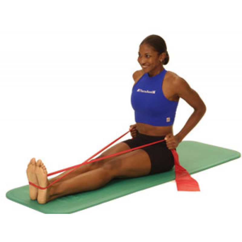 Thera-Band Shoulder Seated Row (in long sitting)
