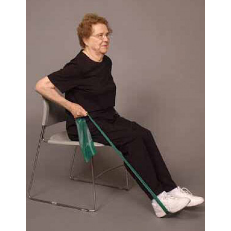 Thera-Band Shoulder Seated Row in Sitting
