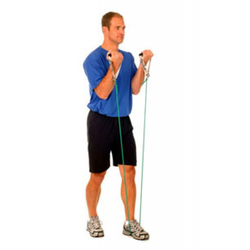 Thera-Band Elbow Biceps Curl (standing)