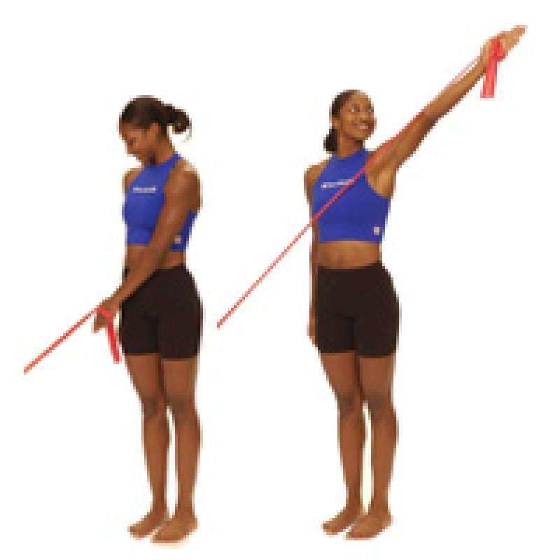 Thera-Band Shoulder Diagonal Flexion (D2)