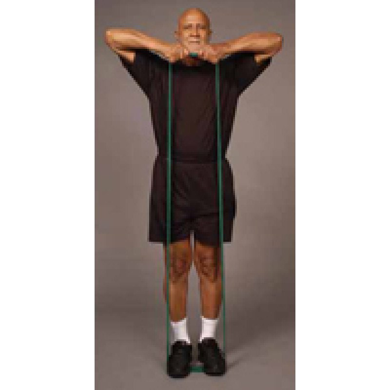 Thera-Band Shoulder Upright Row in Standing