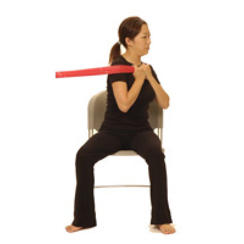 Thera-Band Trunk Rotation in Sitting