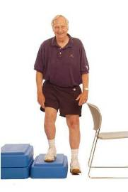 Lateral Step Up Exercise | www.pixshark.com - Images ...