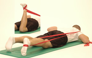 Thera-Band Knee Extension (in prone) - Performance Health ...